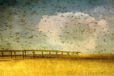 Photograph - Birds Over Bridge by Marysue Ryan
