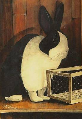 The Black And White Dutch Rabbit  2 Art Print
