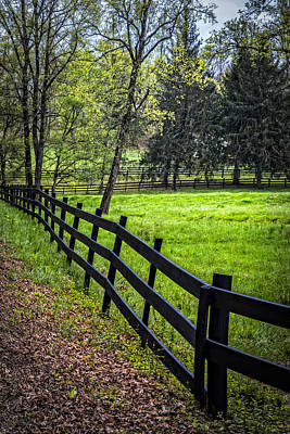 Kentucky Horse Park Photograph - The Black Fence by Debra and Dave Vanderlaan