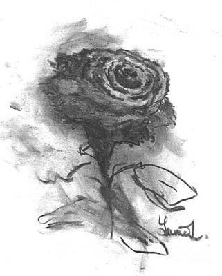 Drawing - The Black Rose by Laurie L