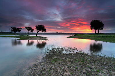 Coastal Landscape Photograph - The Blessing Of The Sun by Rui David