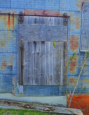 Photograph - The Blue Door by Patti Raine