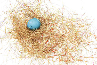 Photograph - The Blue Egg by Jennie Marie Schell