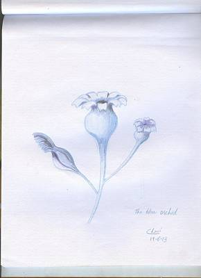 Painting - The Blue Orchid  by Archana Saxena