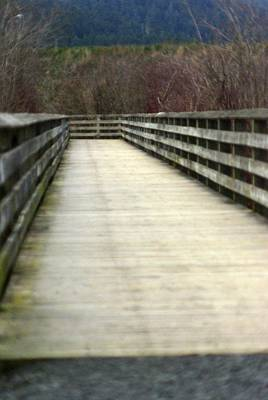 Photograph - The Boardwalk by Marilyn Wilson