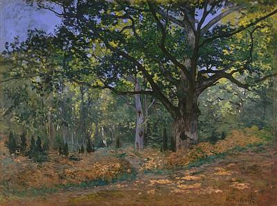 Fontainebleau Painting - The Bodmer Oak by Claude Monet