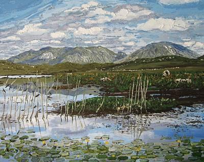 The Bog Road Roundstone Connemara Art Print by Diana Shephard