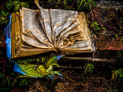 Medford Photograph - The Book by Louis Dallara