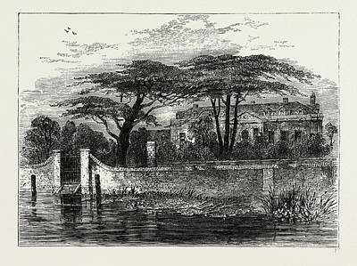 The Botanical Gardens, Chelsea Art Print by Litz Collection