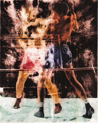 The Boxer Print by Angus Carter