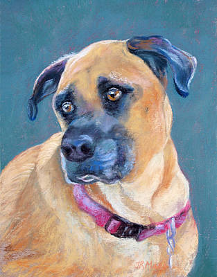 The Boxer Art Print by Julie Maas