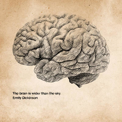Home Offices Drawing - The Brain Is Wider Than The Sky by Taylan Apukovska