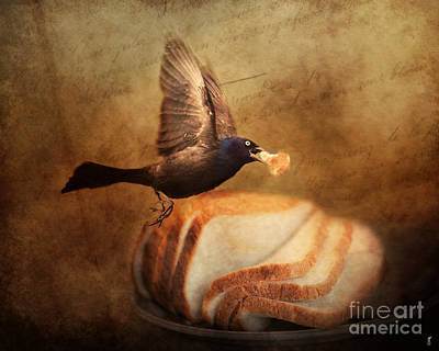 The Bread Thief Art Print by Jai Johnson