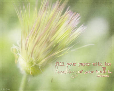 Pasque Flower Digital Art - The Breathings Of Your Heart - Inspirational Art By Jordan Blackstone by Jordan Blackstone