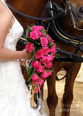 Photograph - The Bride And Her Bouquet by Terri Waters