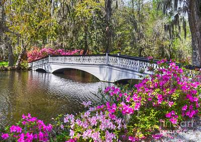 The Bridge At Magnolia Plantation Art Print
