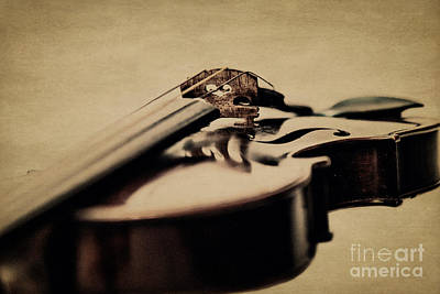 Violin Photograph - The Bridge by Emily Kay