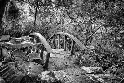 Photograph - The Bridge by Howard Salmon