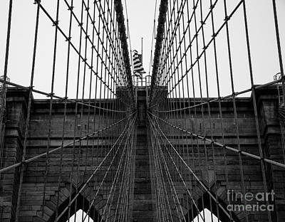 The Brooklyn Web Art Print