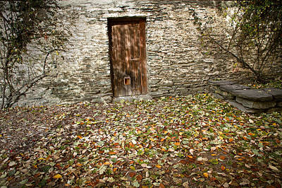 Photograph - The Brown Door by Brad Grove