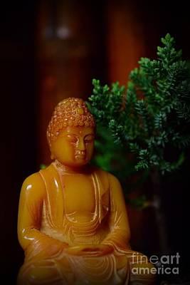 The Buddha Knows Art Print by Paul Ward