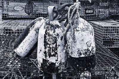 Photograph - The Buoys And The Lobster Traps In Black And White by Barbara Youngleson