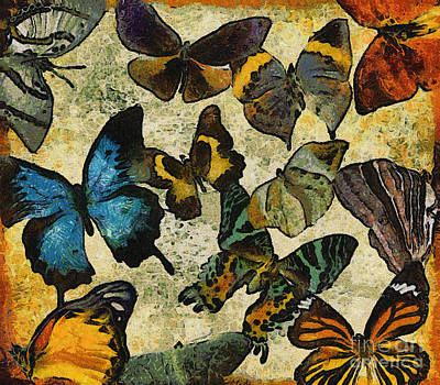 Digital Art - The Butterfly Collection #1 by Nola Lee Kelsey
