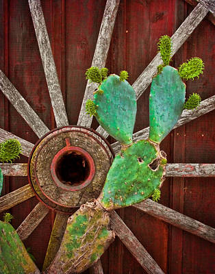 Wagon Wheels Photograph - The Cactus And The Wheel by David and Carol Kelly