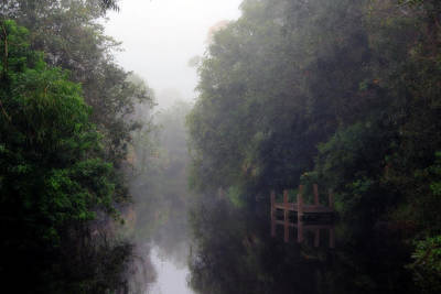 Labelle Photograph - The Canal by Dale Conyers