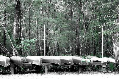 Bear Photography Rights Managed Images - The Canoes  Royalty-Free Image by Debra Forand