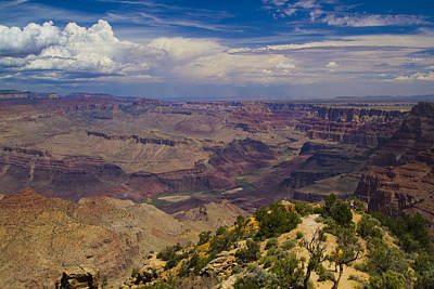 Photograph - The Canyon Captivates by Tom Kelly