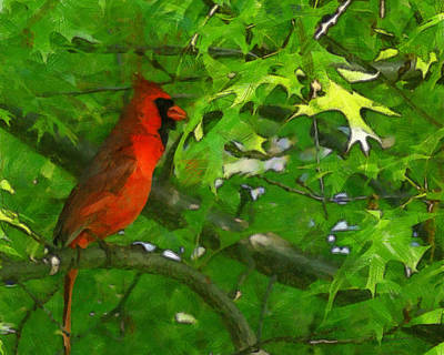 Cardinal Digital Art - The Cardinal 2 Painterly by Ernie Echols