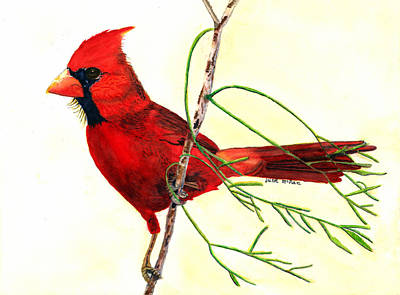 Painting - The Cardinal is Watching by June McRae
