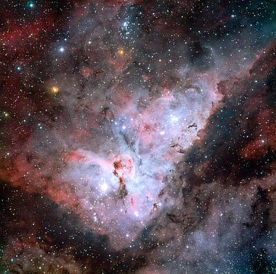 Virgo Photograph - The Carina Nebula by Celestial Images