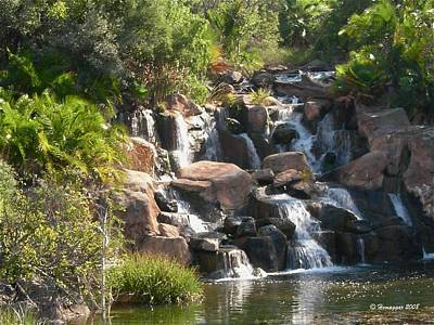 Photograph - The Cascade In South Africa by Hemu Aggarwal