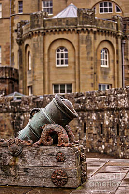 Photograph - The Castle Cannon by Kate Purdy