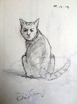 Tabby Drawing - The Cat by H James Hoff