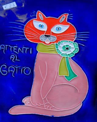 Photograph - The Cat In Cinque Terre by Caroline Stella