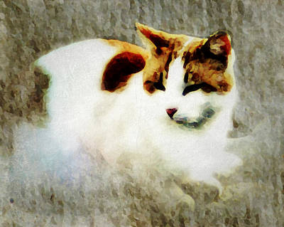Art Print featuring the digital art The Cat by Persephone Artworks