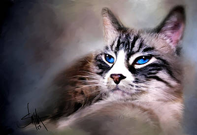 Eyes Mixed Media - The Cat by Robert Smith
