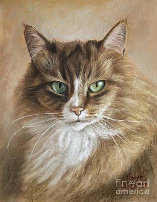 Cats Drawing - The Cat by Tobiasz Stefaniak
