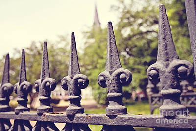 South Louisiana Photograph - The Cathedral Fence by Scott Pellegrin