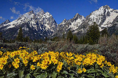 Photograph - The Cathedral Peaks by Ken Smith
