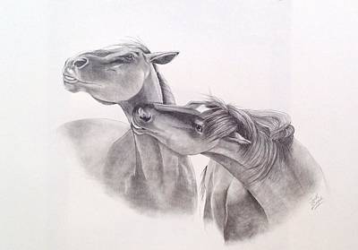 Wild Horses Drawing - The Challenge by Joette Snyder