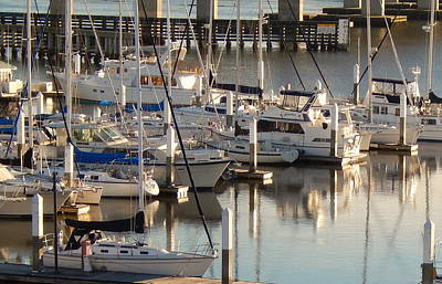 The Charleston City Marina Original by Terry Cobb