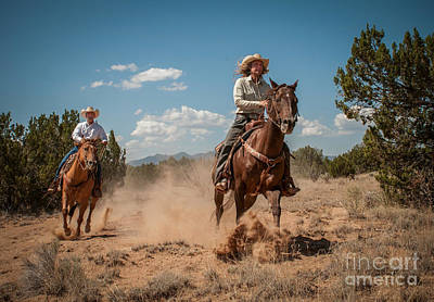 Photograph - The Chase by Sherry Davis