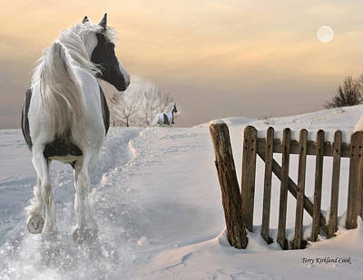 Gypsy Vanner Horse Digital Art - The Chase by Terry Kirkland Cook