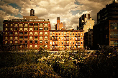 Skylines Photograph - The Chelsea Skyline - High Line Park - New York City by Vivienne Gucwa