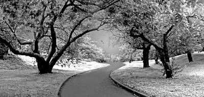 The Cherry Orchard Infrared Art Print