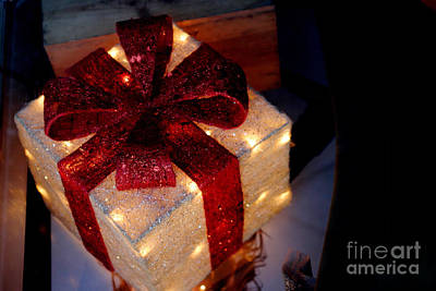 Photograph - The Christmas Gift by Living Color Photography Lorraine Lynch